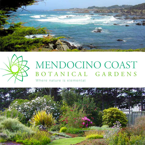 Attrayant Mendocino Coast Botanical Gardens   MCBG Inc. 2018 | Fort Bragg, California