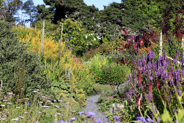 Perennial garden collections mcbg inc 2018 fort for Perennial garden