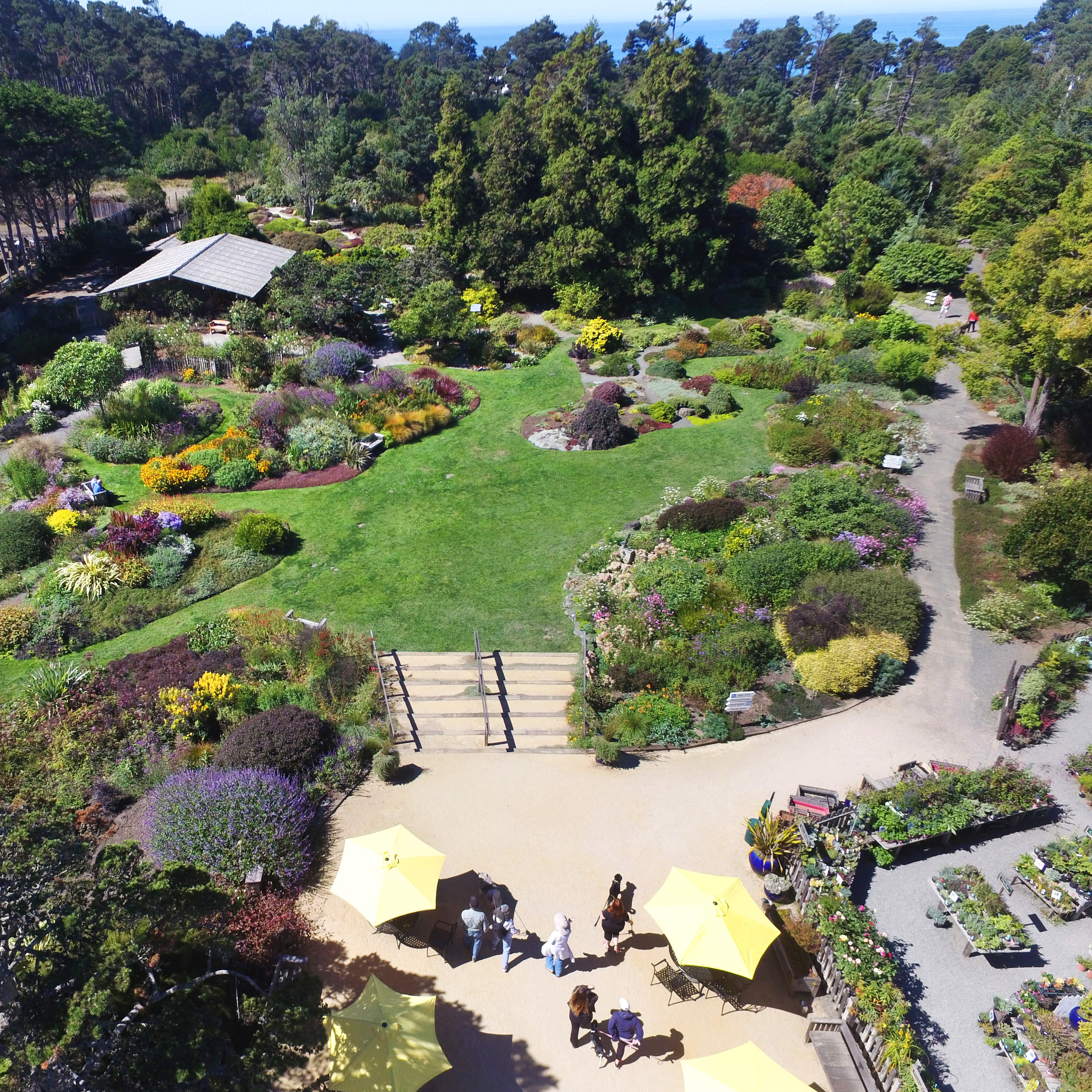 Your gift makes a difference support mcbg inc 2019 - Mendocino coast botanical gardens ...