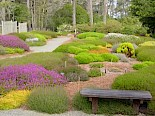 Heather Garden 1 gallery image