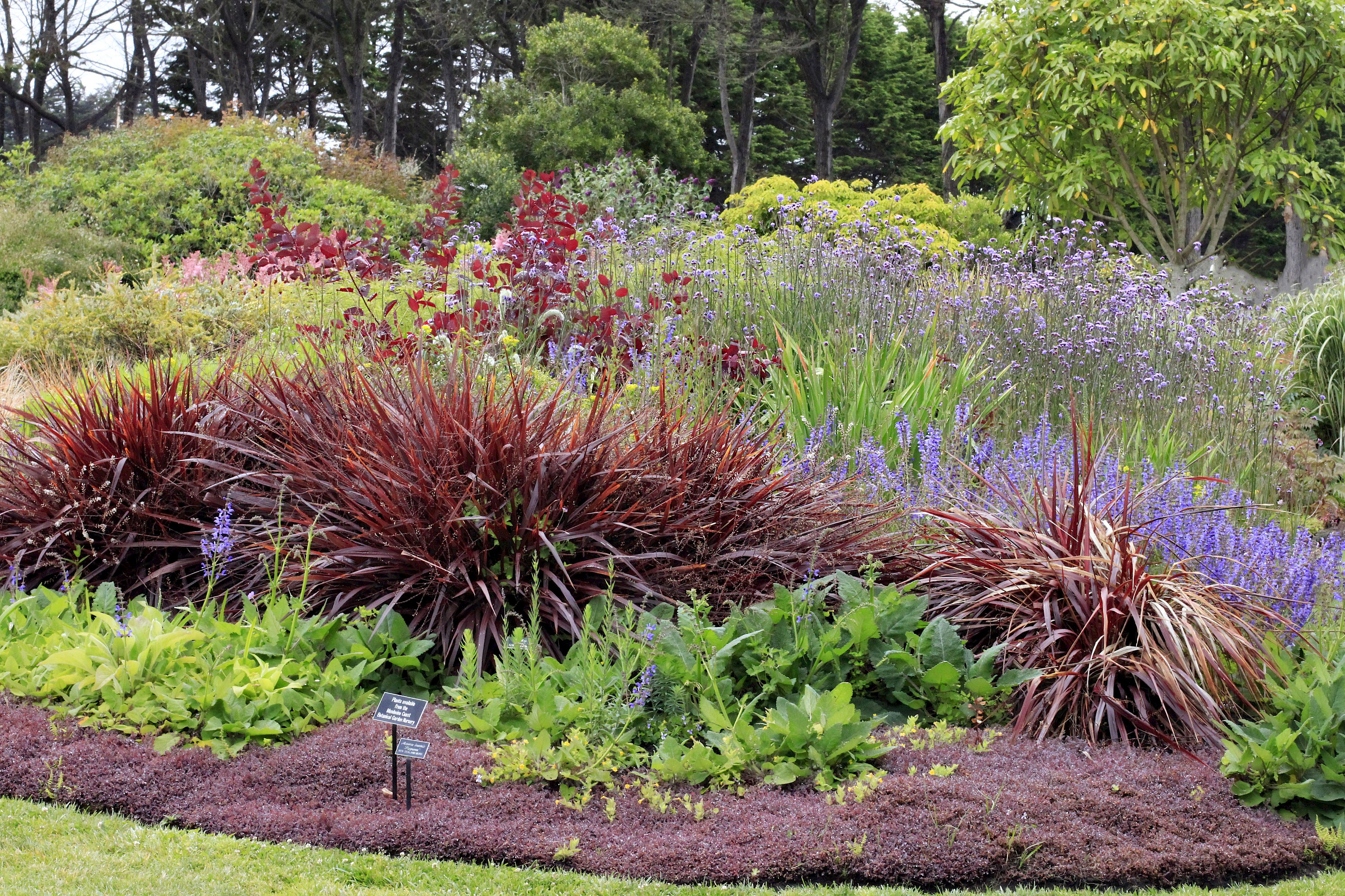 Perennial Garden Photo Galleries Mcbg Inc 2018 Fort
