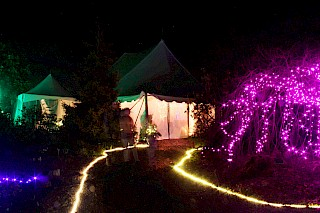 Festival of Lights 2015 gallery image