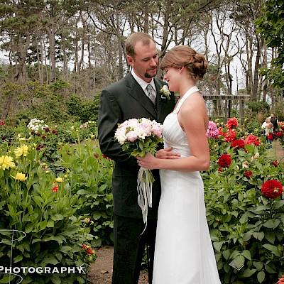 Dahlia Garden Wedding Ceremony Weddings Amp Events Mcbg