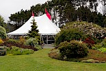 The elegant tent featured a cascade of vibrant rhododendrons, raffles, a silent auction, people
