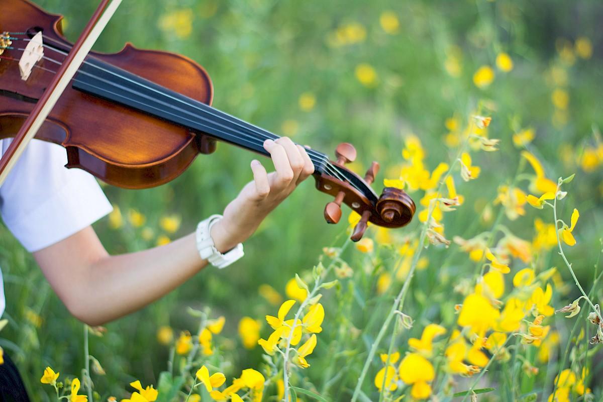 Outdoor Garden Concerts